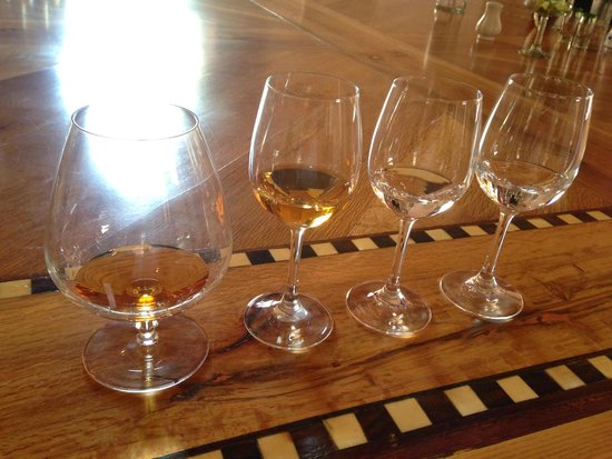 Excellence Playa Mujeres: Tequila Tasting!