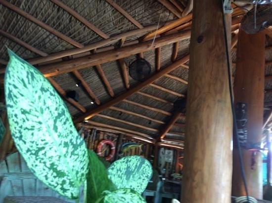 Guanabanas : tikki