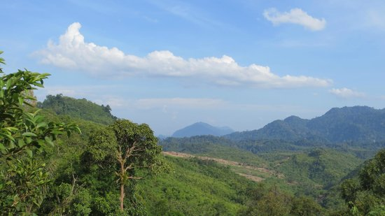 Saloma's Villagestay : view from village