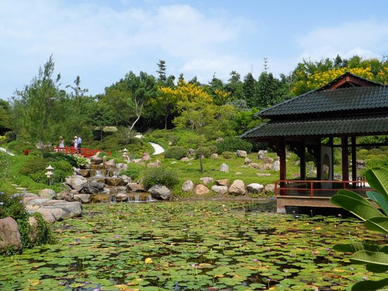 Detalle jardin japones picture of jardines de mexico for Jardines mexico