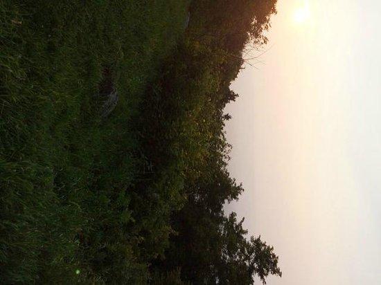 Skyland: View, askewed