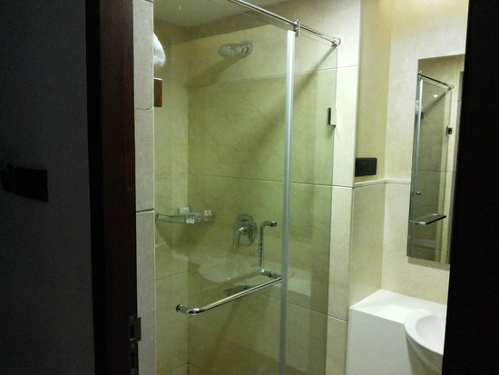 View of Shower Chamber