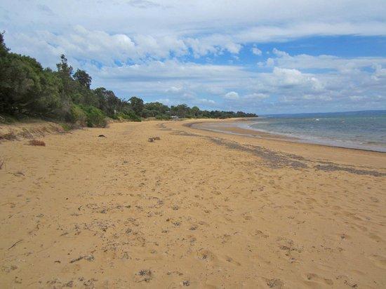 Seahorse Motel: Empty beaches