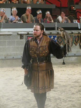 Medieval Times: The Hawk tamer