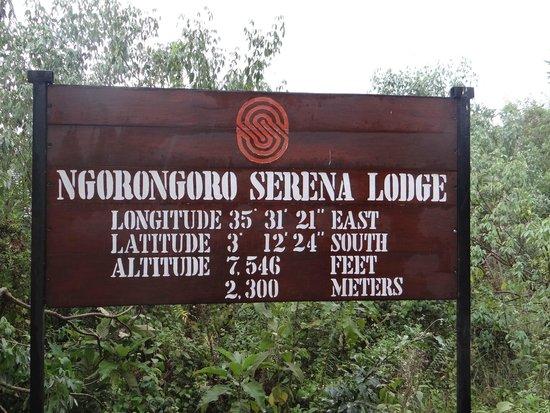 Ngorongoro Serena Safari Lodge : Hotel info