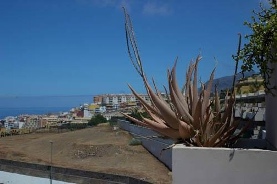 Holiday Village Tenerife: View from room