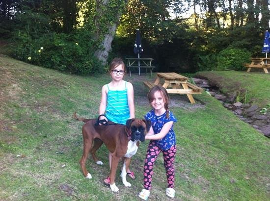 The Hunters Moon Inn: Kids and dog enjoying the lovely surroundings of the pub