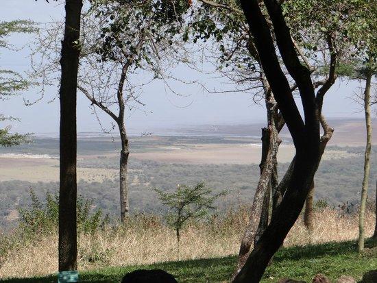 Lake Manyara Serena Lodge: View