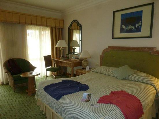 Fantasia Hotel De Luxe : Стандартный наш номер