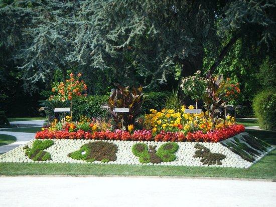 Jardin des plantes de Coutances: 2