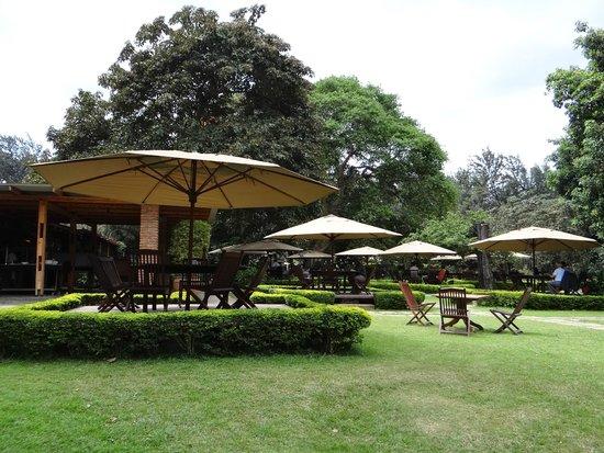 Arusha Coffee Lodge: Grounds