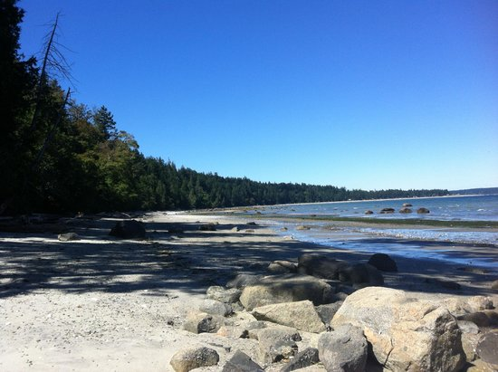 Savary Island, Canadá: Mermaid Beach - 5 minute walk from the resort!