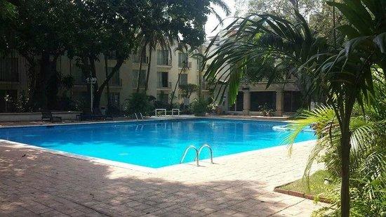 Hotel Viva Villahermosa: Area de la alberca