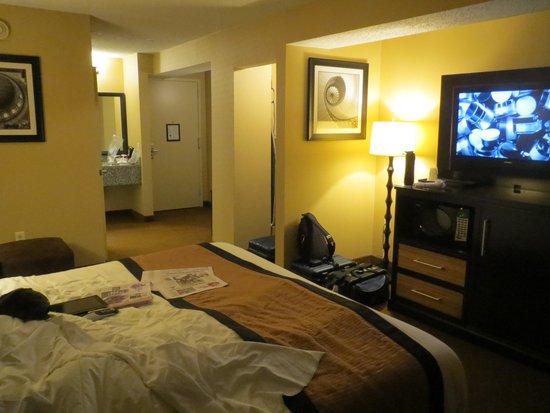 BEST WESTERN Plus Newark Airport West : King Room