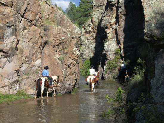 Geronimo Trail Guest Ranch: Canyon riding