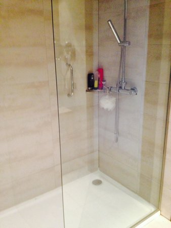 Protur Palmeras Playa : Walk in shower