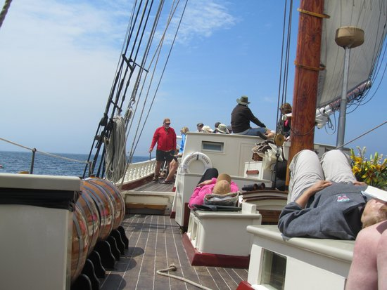 Schooner Stephen Taber Day Cruises: How to spend your afternoon