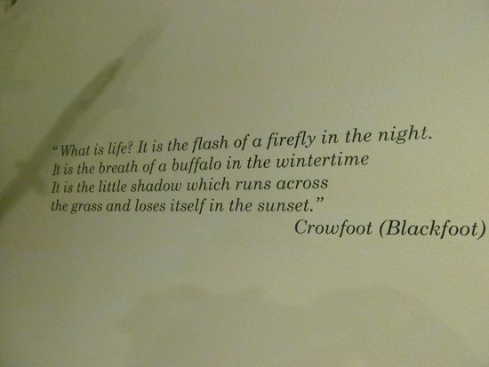 Silver City Museum: What a profound statement of life!
