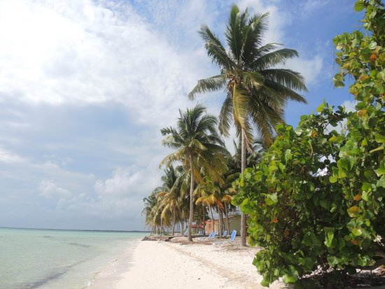 Gran Caribe Club Villa Cojimar: Пляж