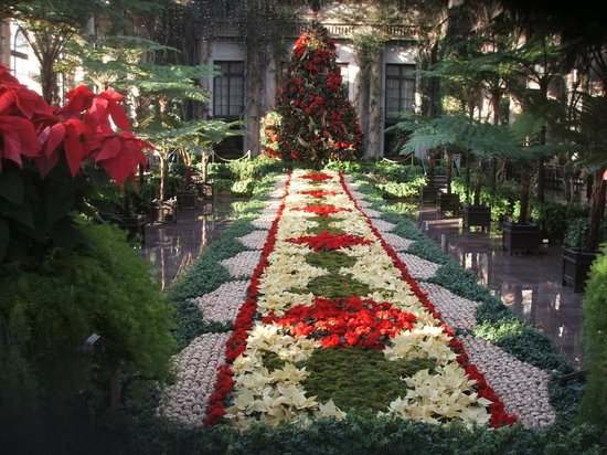 Christmas theme changes every year picture of longwood gardens kennett square tripadvisor for Longwood gardens christmas 2017