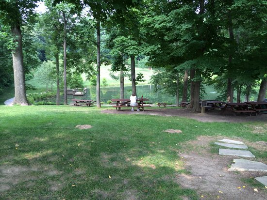 Oliver Winery: Picnic tables toward the pond.
