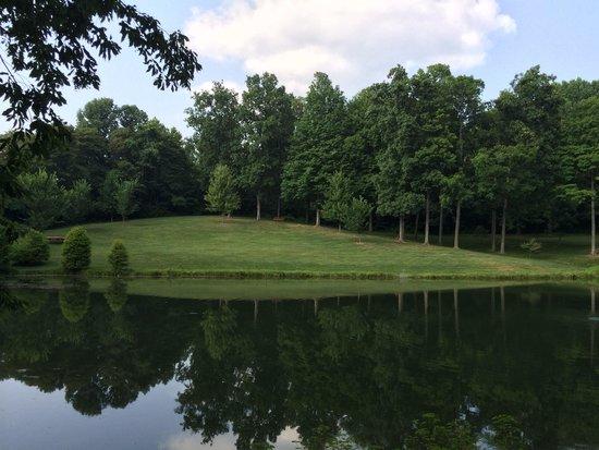 Oliver Winery: Pond.