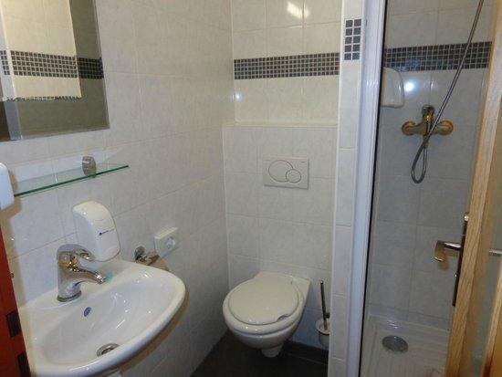 Residence Bene : Bathroom with shower