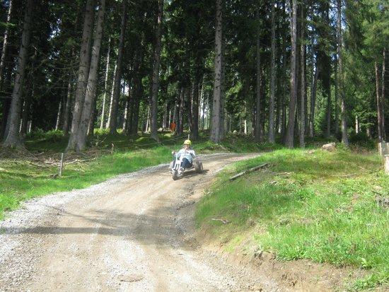 Muttereralm Mountain Cart: Driving downhill