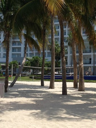 Hotel Riu Palace Peninsula: Beach with palm trees