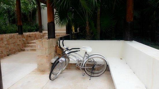 Blue Diamond Luxury Boutique Hotel: 로비에서 자전거도 빌릴수 있다.