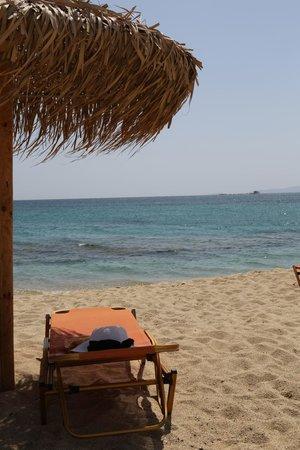 Plaza Beach Hotel: la spiaggia dell'hotel