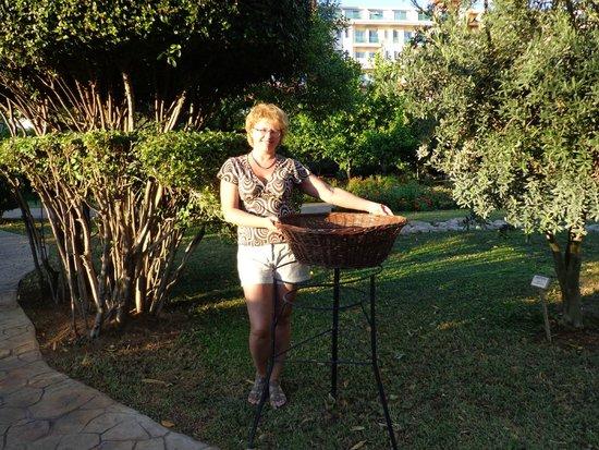 Belconti Resort Hotel: фотки на память