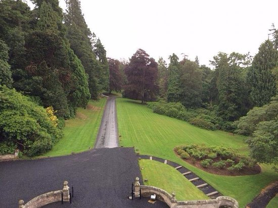 Kinnettles Castle: View from my room