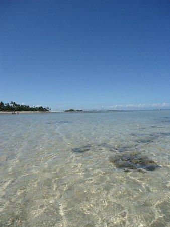 Quarta Praia Beach: Águas calmas e transparentes