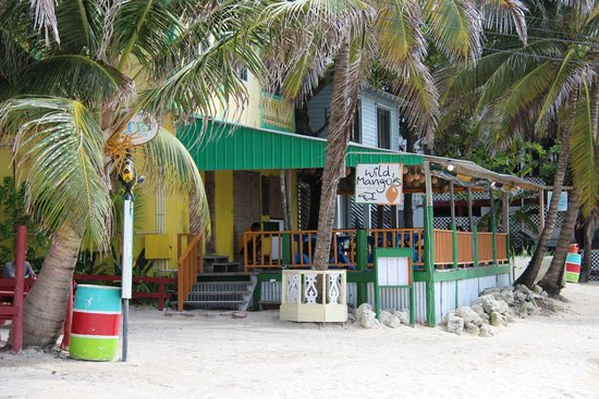Wild Mango's : Photo from outside by the sea