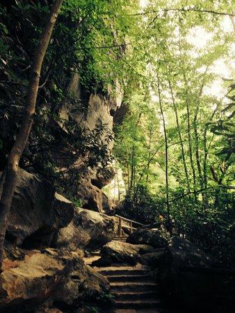Natural Bridge State Resort Park : Rock formations near Natural Bridge