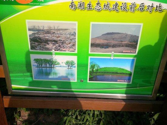 Phoenix Mountain Park: Photos of comparison