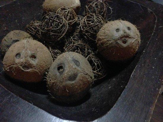 Cocobay Resort: The coconuts had faces! :)