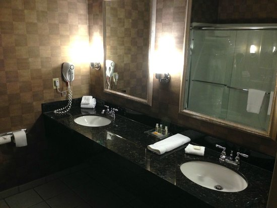 Holiday Inn Carbondale Conference Center: X-large Bathroom
