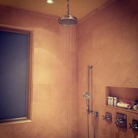 The St. Regis Bahia Beach Resort: shower