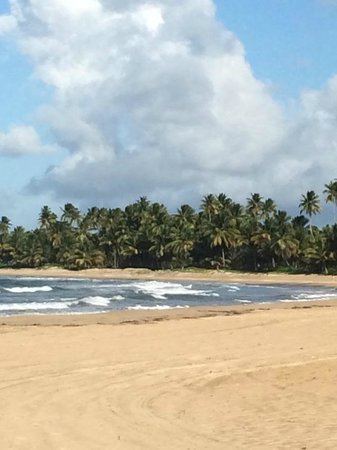 The St. Regis Bahia Beach Resort: beach
