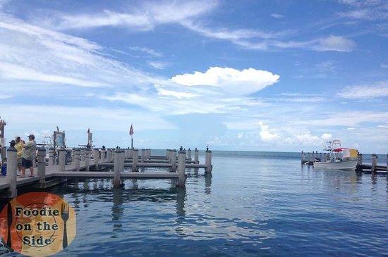 Island Fish Company : Waterside View