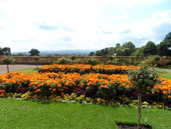 Hestercombe Gardens: Parterre