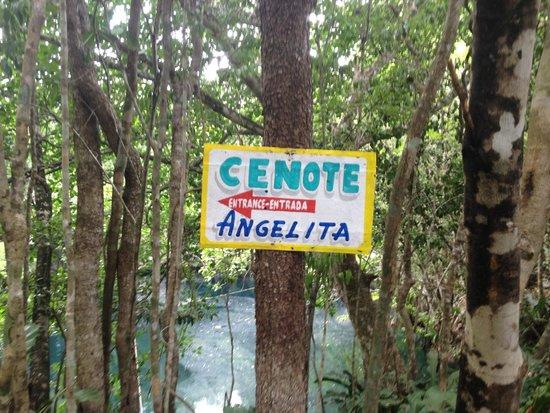 Phocea Mexico: Cenote Angelita .