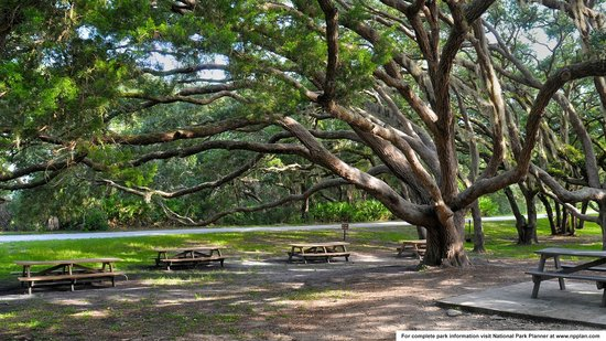 Fort Matanzas National Monument: Picnic Area