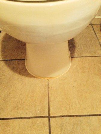 Best Western Ocean View Resort : Yellow seal on toilet.