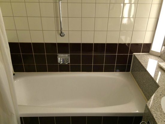 Radisson Blu Scandinavia Hotel: bathroom looks decent