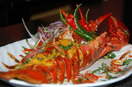 Fushia: Chef's Special Lobster
