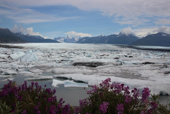 Knik Glacier Tours : Knik Glacier