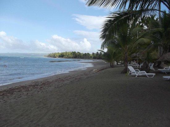 Grand Bahia Principe San Juan : Beach area facing towards the town of San Juan